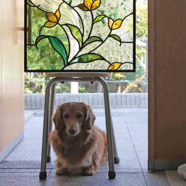 通販で花のステンドグラスを探しています